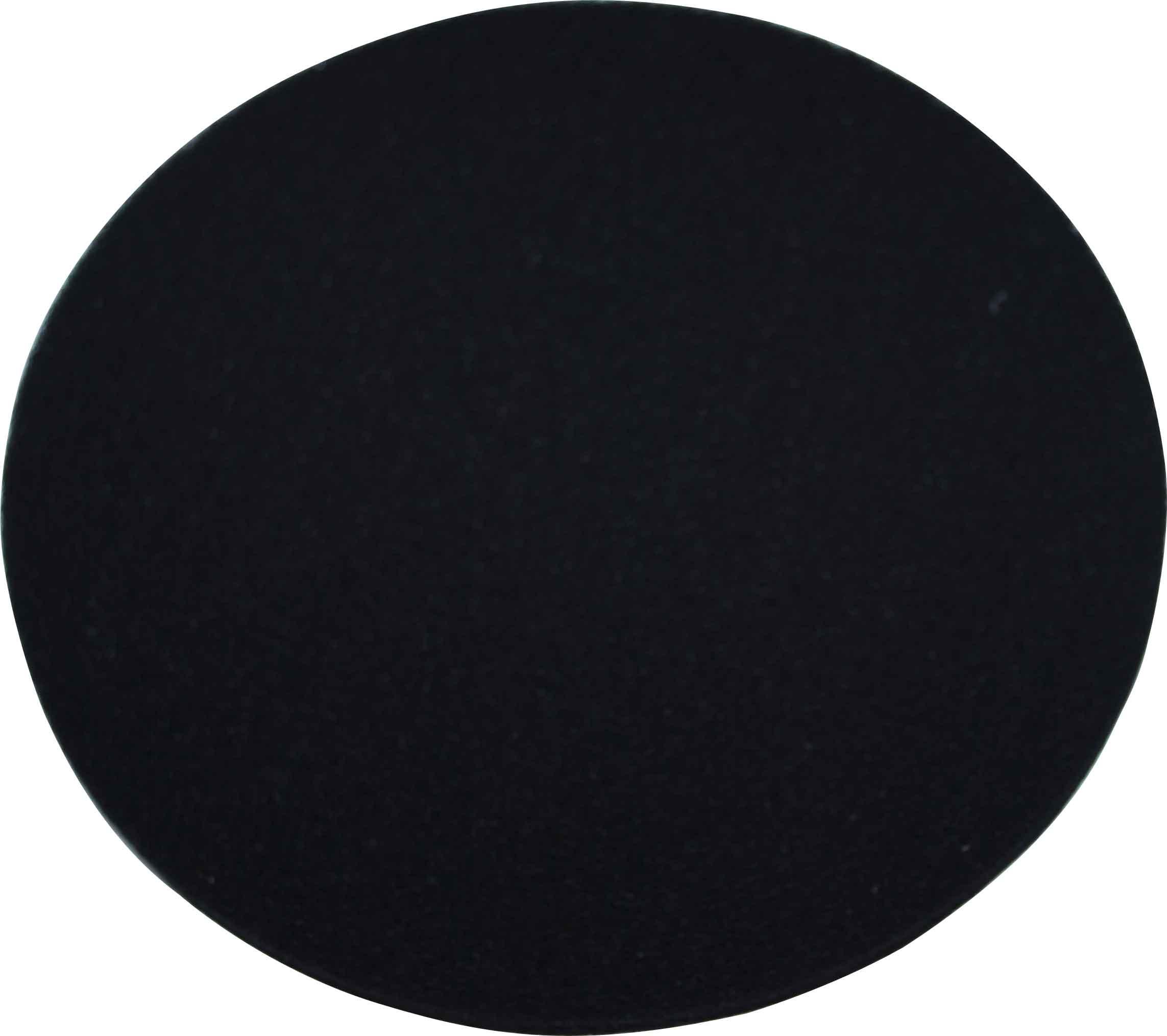 FILTRE À CHARBON P205 Ø 205MM X H 13MM (VENDU PAR 2)
