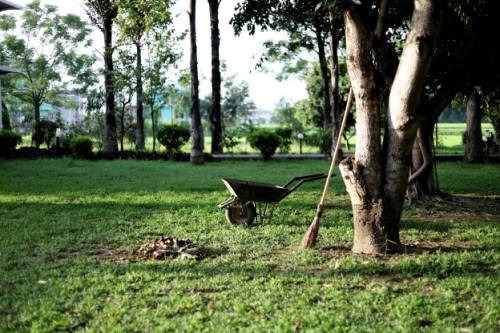 Pour entretenir votre jardin